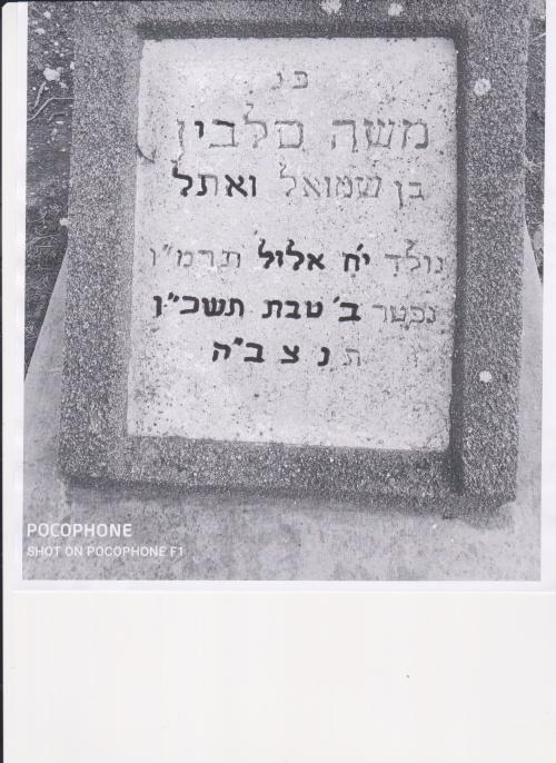 משה סלבין